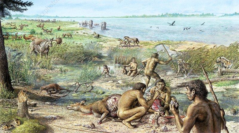 Pleistocene hominins at Happisburgh