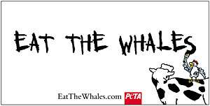 eat the whales